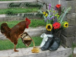 rooster and cowboy boots