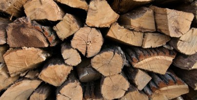 firewood-pile